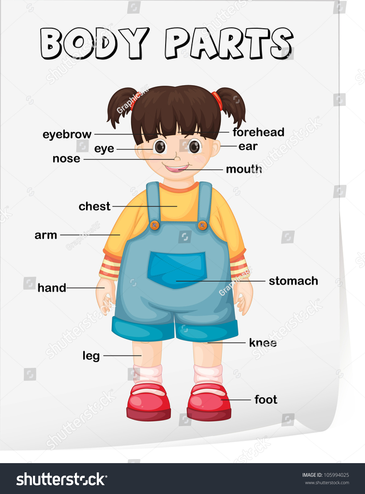 Vocabulary Worksheet Parts Body Stock Illustration