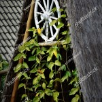 White Wagon Wheel Decorating Sape Roof Stock Photo Edit Now 1132182311