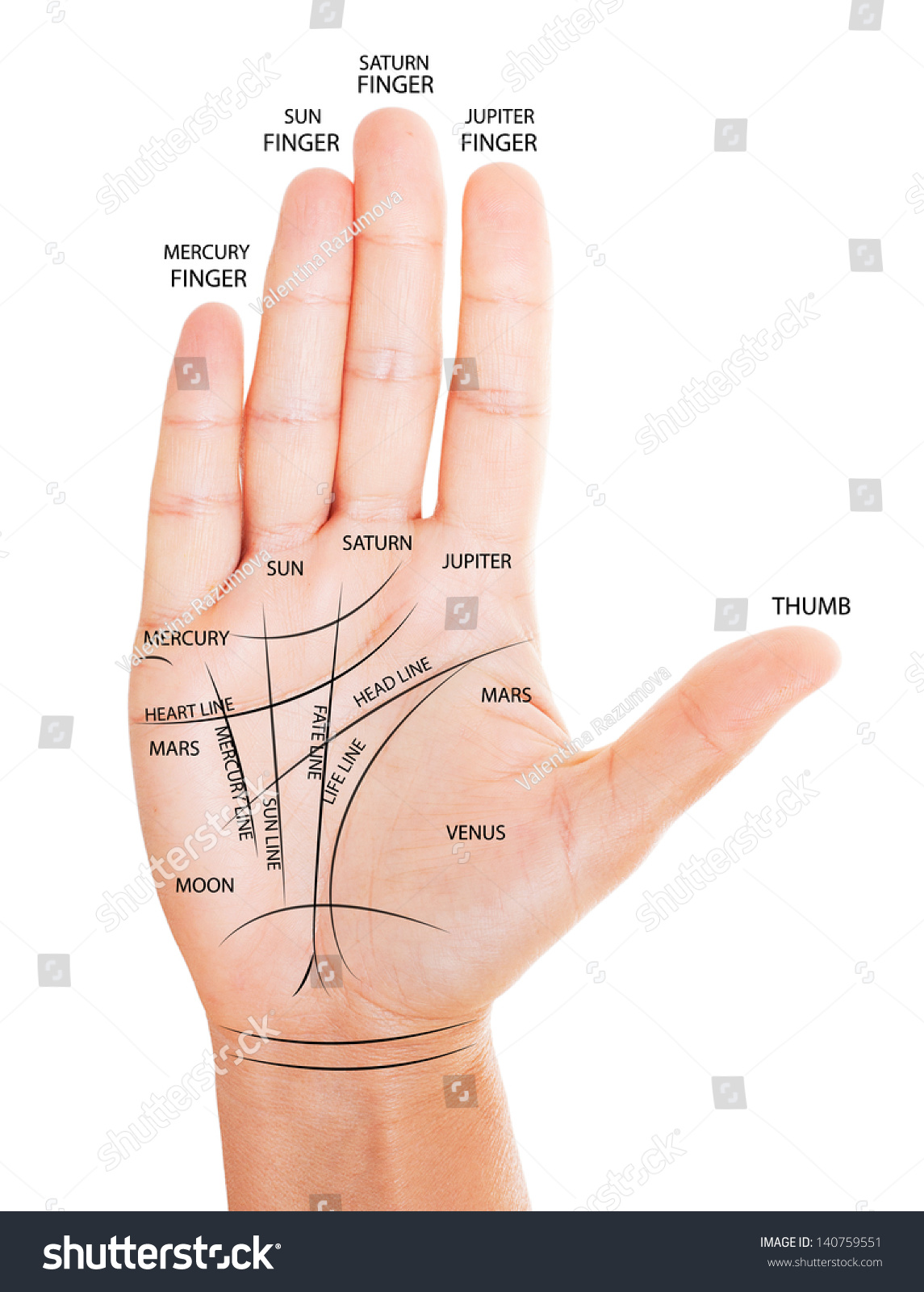 hight resolution of woman hand with palm reading map isolated on white background