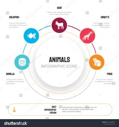 gorilla goldfish goat giraffe frog icons can be used for workflow layout diagram business step options banner web design  [ 1500 x 1600 Pixel ]