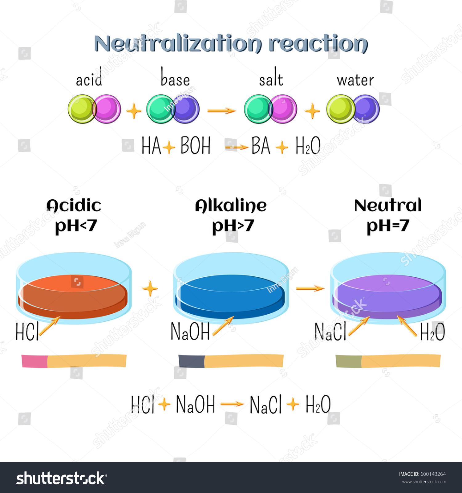 Acidbase Neutralization Reaction Hydrochloric Acid Sodium