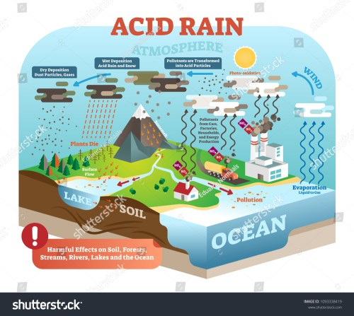 small resolution of diagram acid rain wiring diagrams acid rain diagram pathway
