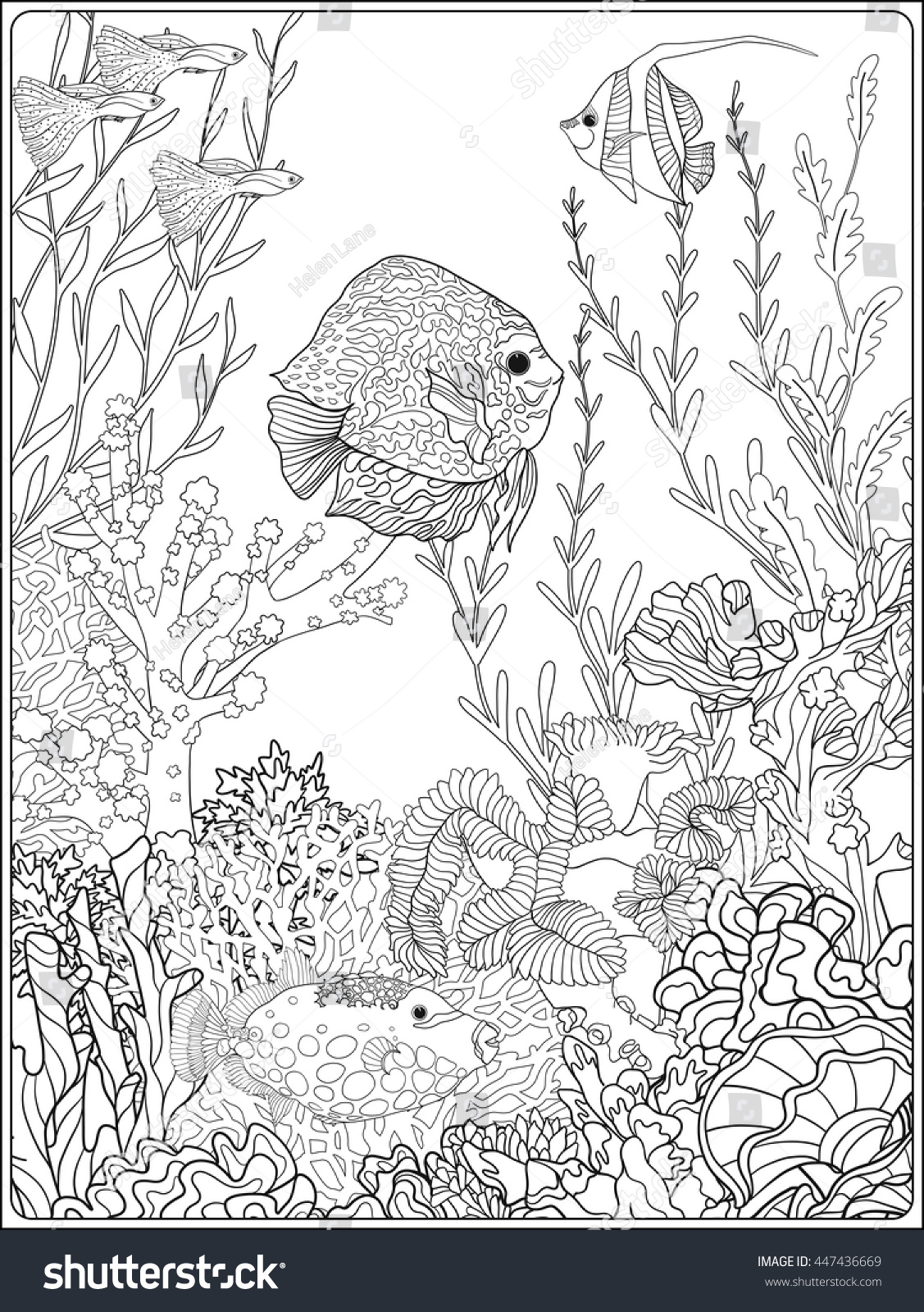 Adult Coloring Book Coloring Page With Underwater World
