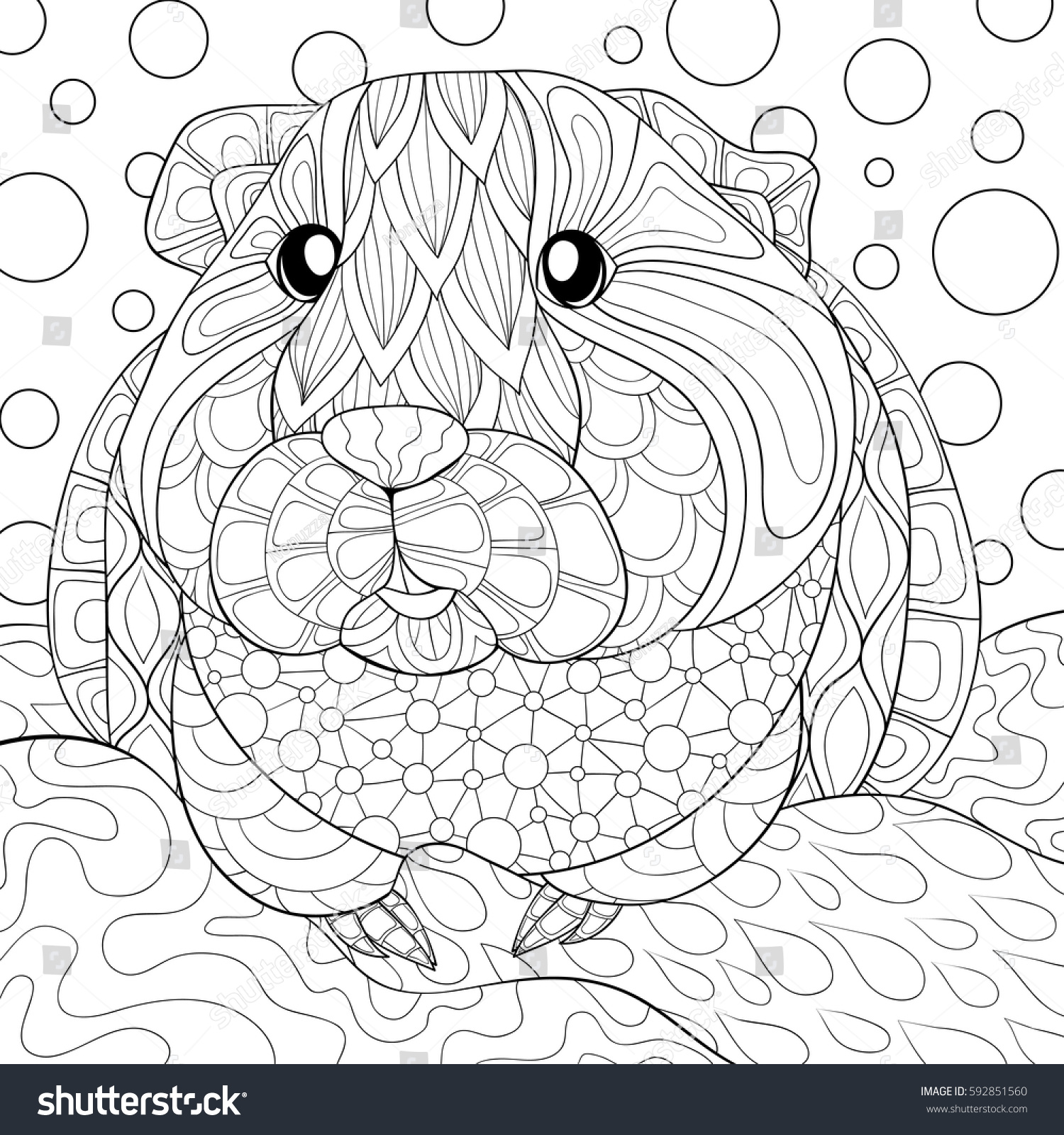 Adult Coloring Book Guinea Pig Art Stock Vector 592851560