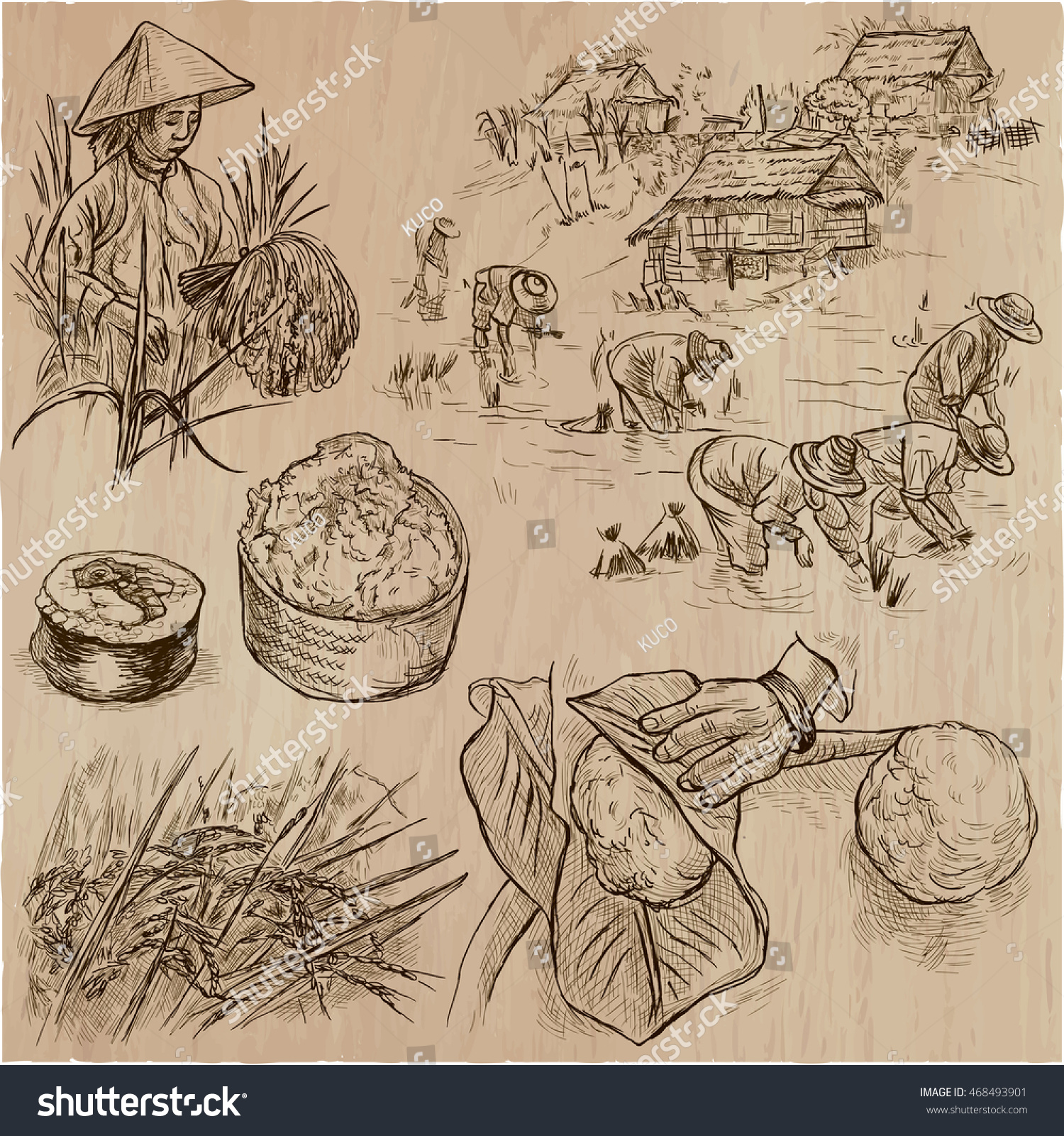 hight resolution of agriculture life of a farmer rice crop collection of hand drawn vector illustrations