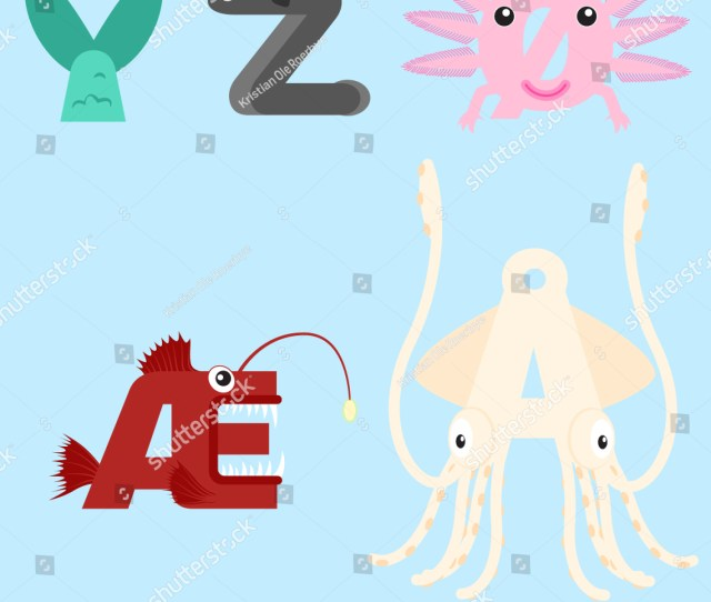 Alphabet Design Of Marine Animals From Y Z And Special Danish Norwegian And Swedish Alphabets