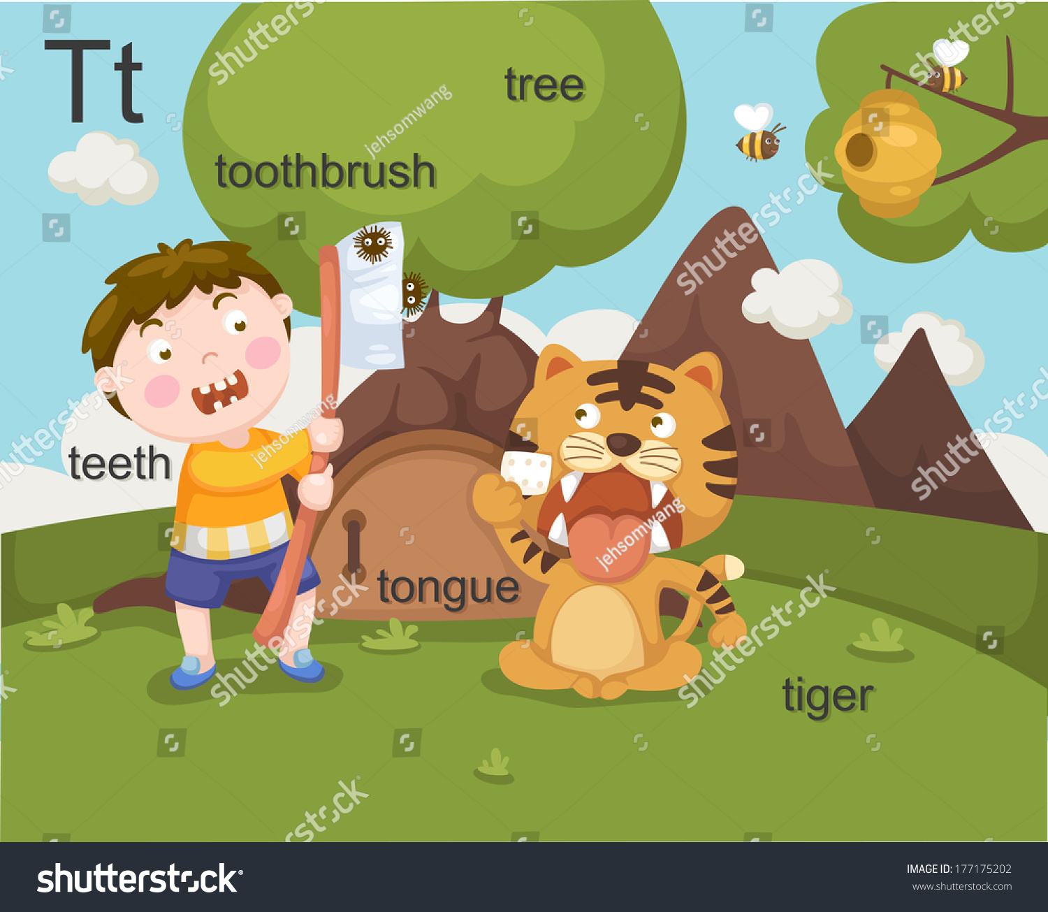 Alphabet T Letter Teeth Toothbrush Tree Tongue Tiger Stock
