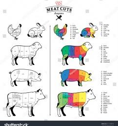 american us cuts of beef pork lamb rabbit and chicken diagrams [ 1436 x 1600 Pixel ]