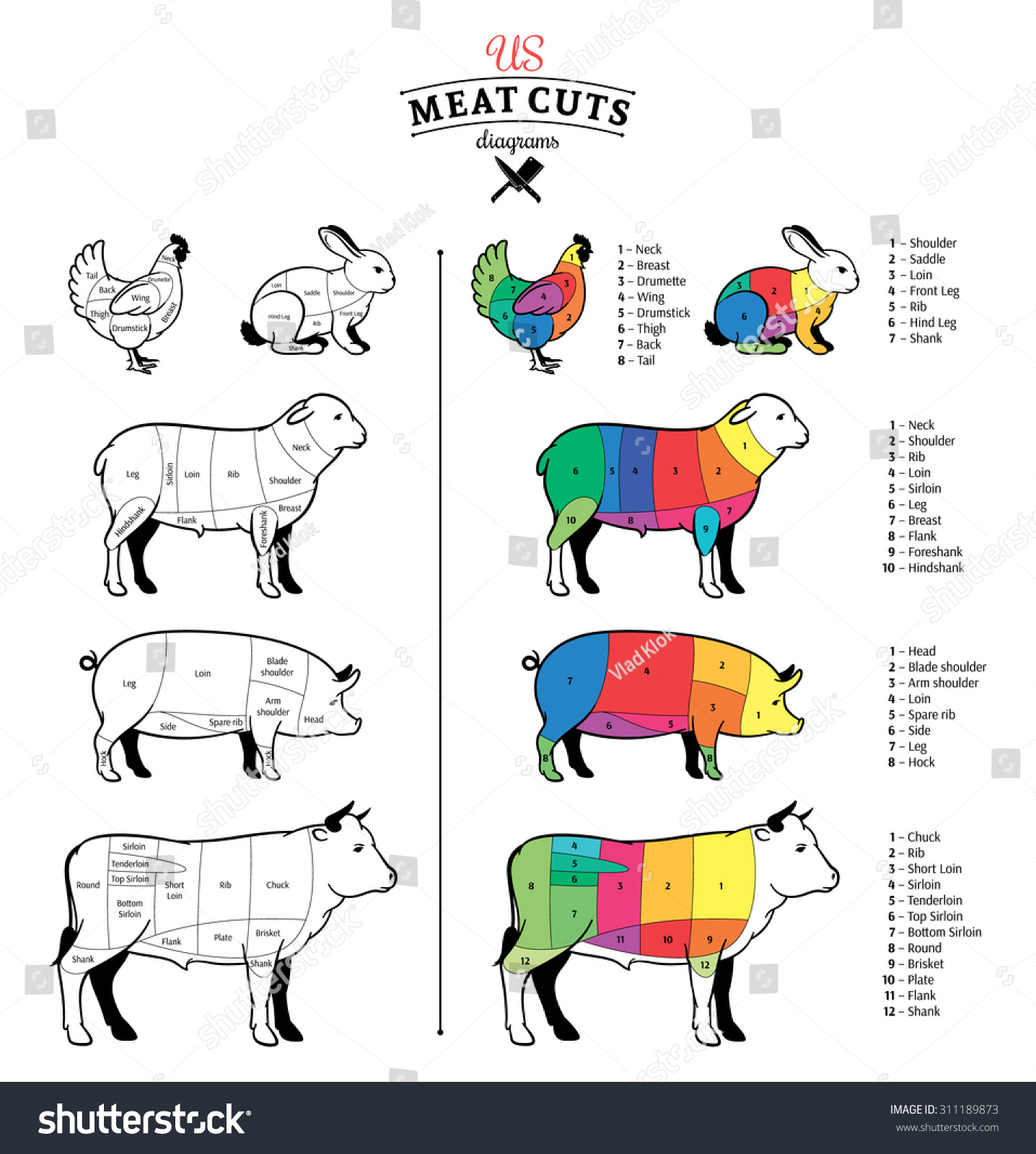 hight resolution of american us cuts of beef pork lamb rabbit and chicken diagrams