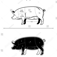 Pig Cuts Diagram Stihl Fs 38 Parts Arm Wiring Today American Us Pork Stock Vector Royalty Free 235306723 Clip Art