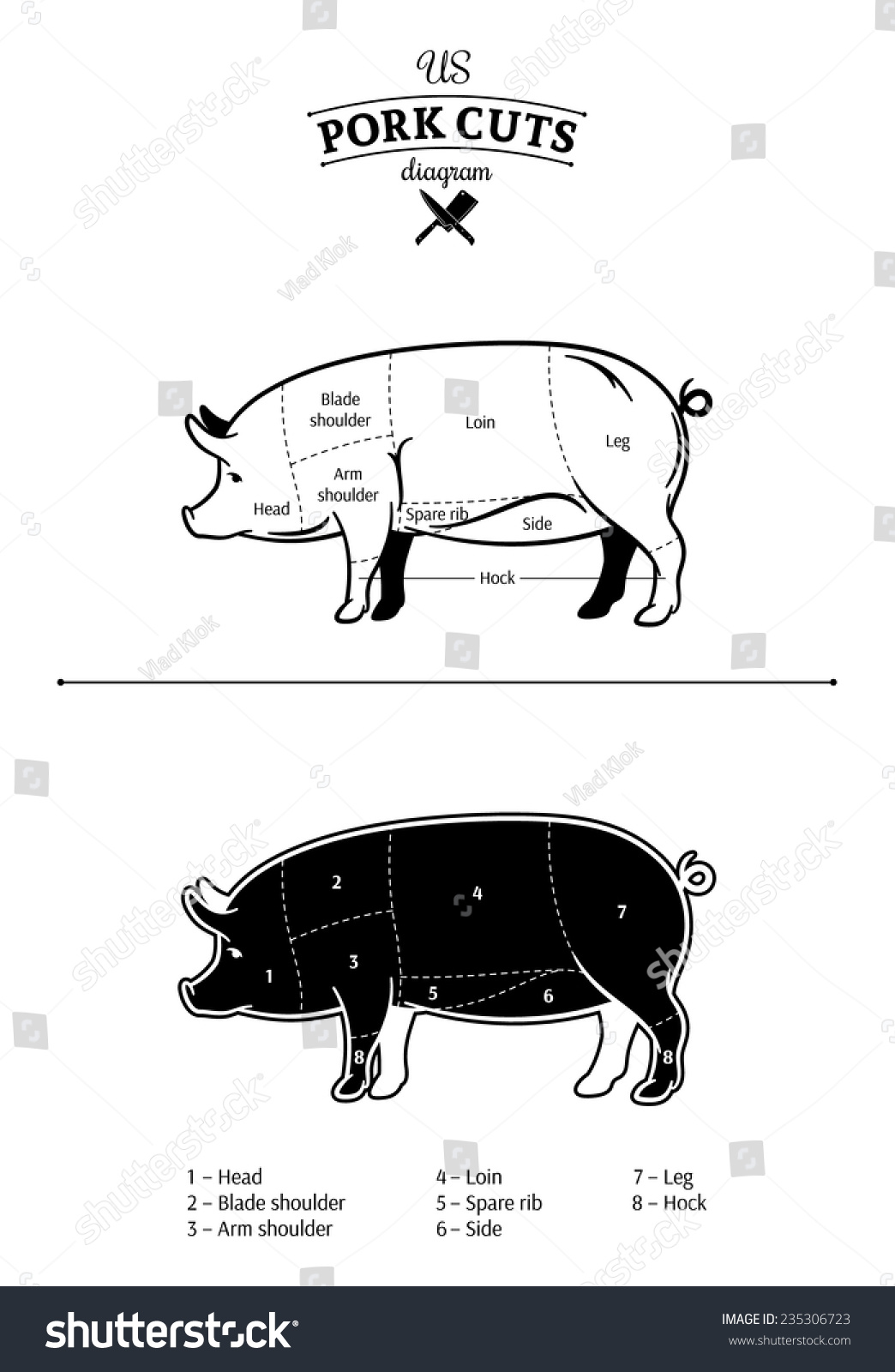 hight resolution of pig arm diagram wiring diagram yer pig arm diagram