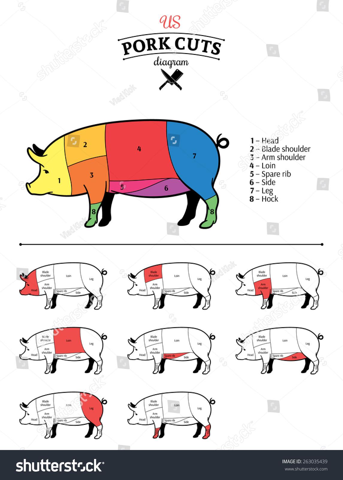 hight resolution of american us pork cuts diagram