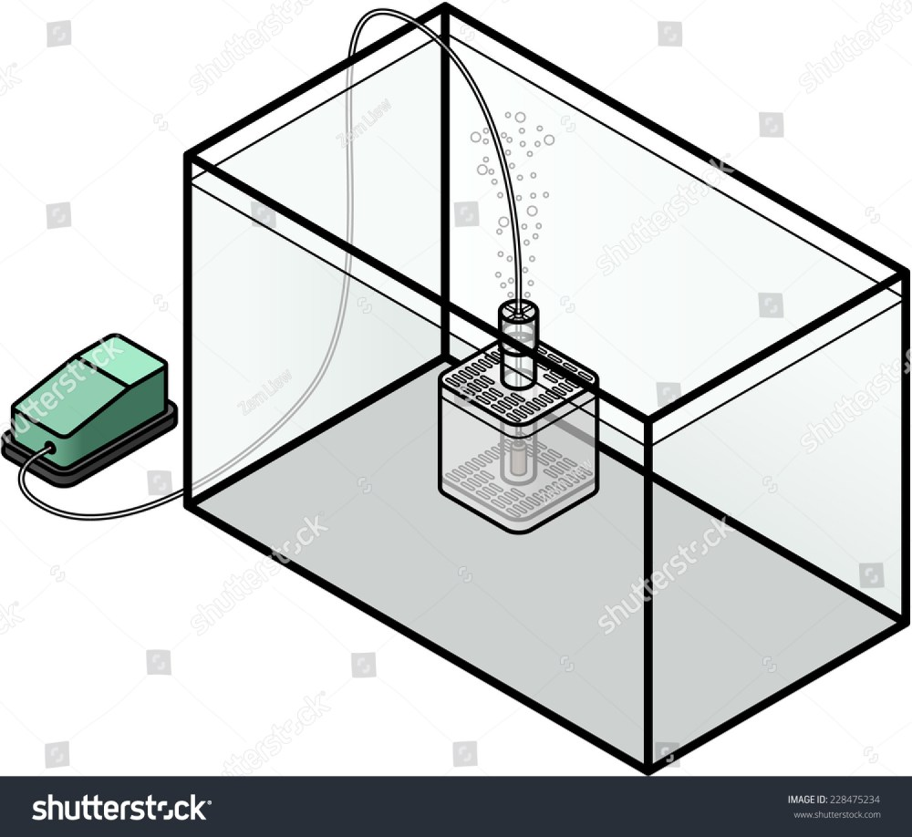 medium resolution of an aquarium filter simple internal box filter powered by an air stone connected to an