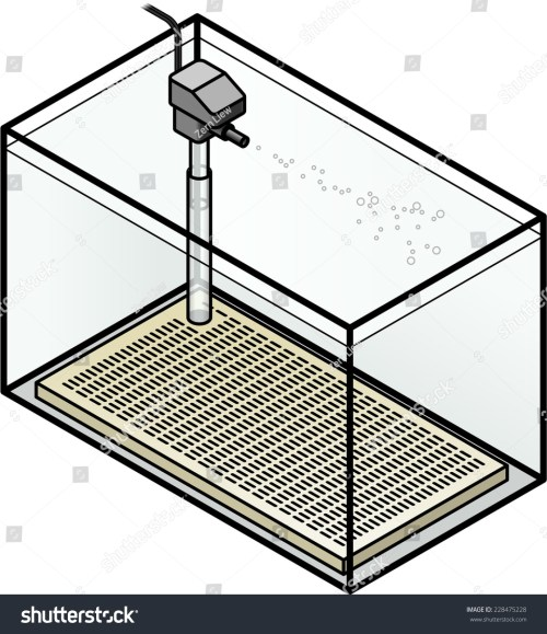 small resolution of an aquarium filter under gravel filter with a power head