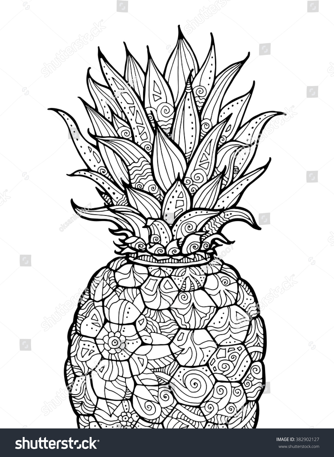 Ananas pineapple exotic fruit floral pattern stock vector · pineapple coloring page