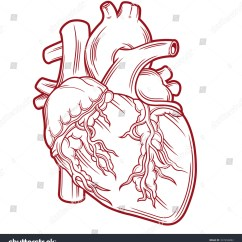 Vintage Red Real Heart Diagram Daikin Split Air Conditioner Wiring Anatomical Stock Vector 337456892 Shutterstock
