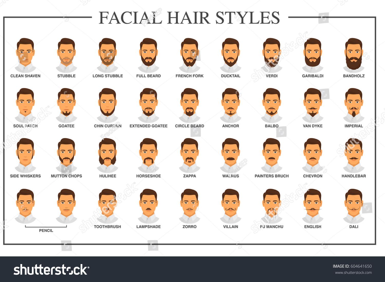 Beard Styles Guide Facial Hair Types Stock Vector
