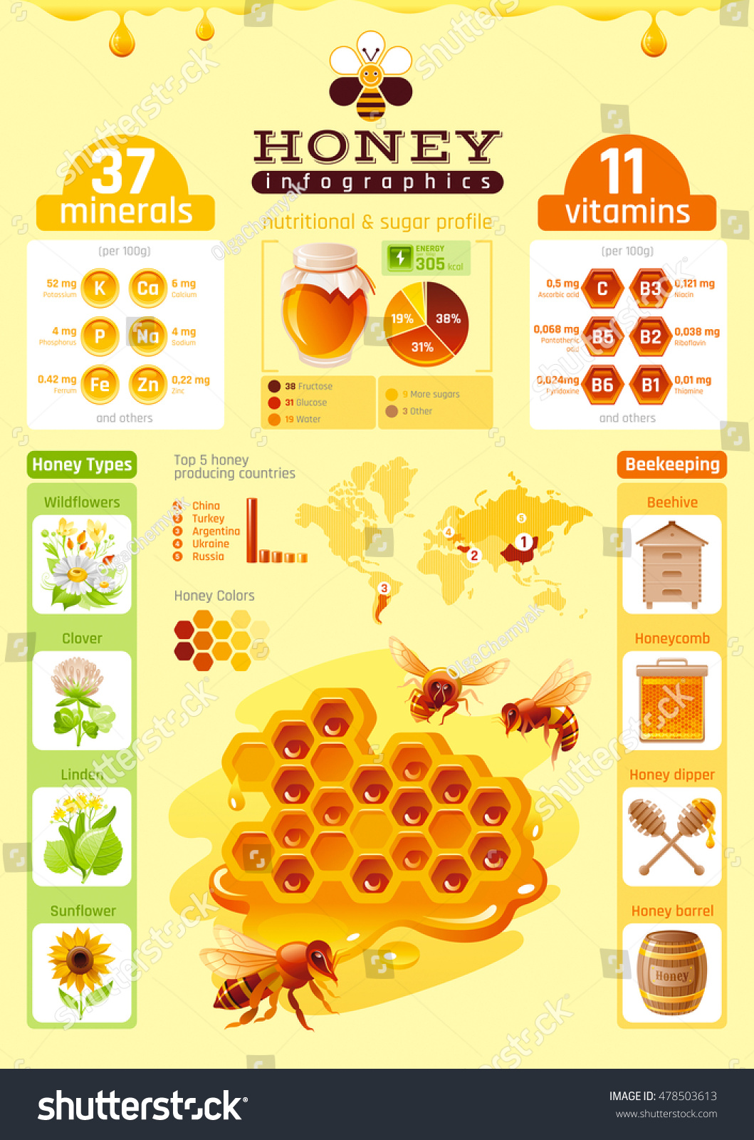 bumble bee diagram 2005 toyota corolla fuse box honey template infographics vitamin mineral stock