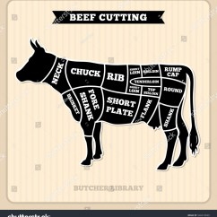 Beef Cuts Diagram Of Cow Radio Wiring For 2003 Chevy Tahoe Butcher Vector Stock