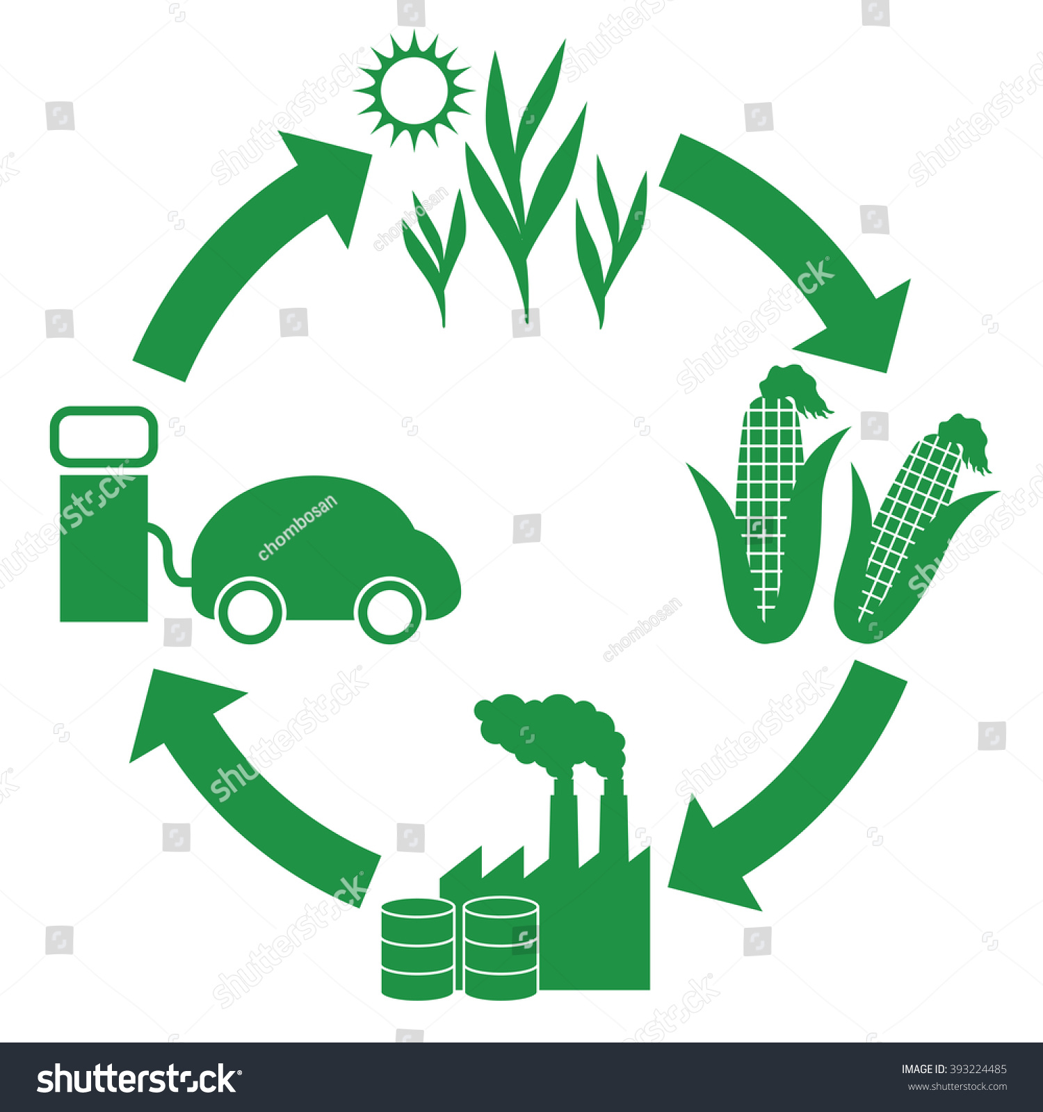 corn plant life cycle diagram 2001 honda civic stereo wiring biofuel biomass ethanol stock vector