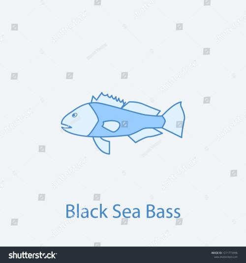 small resolution of black sea bass 2 colored line icon simple light and dark blue element illustration