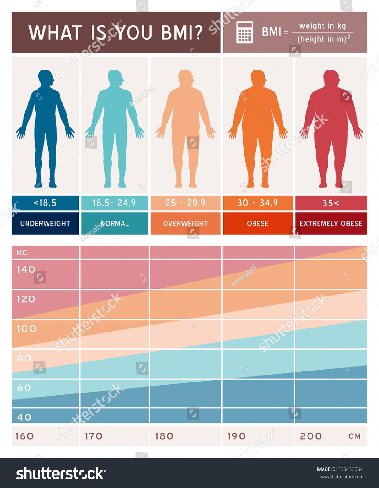 Body Mass Index Infographics Body Shapes Stock Vector