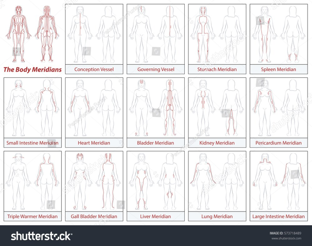 medium resolution of body meridians chart female body schematic diagram with main acupuncture meridians and their directions