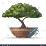 Bonsai Tree Asian Culture Vector Watercolor Stock Vector Royalty Free 275125703