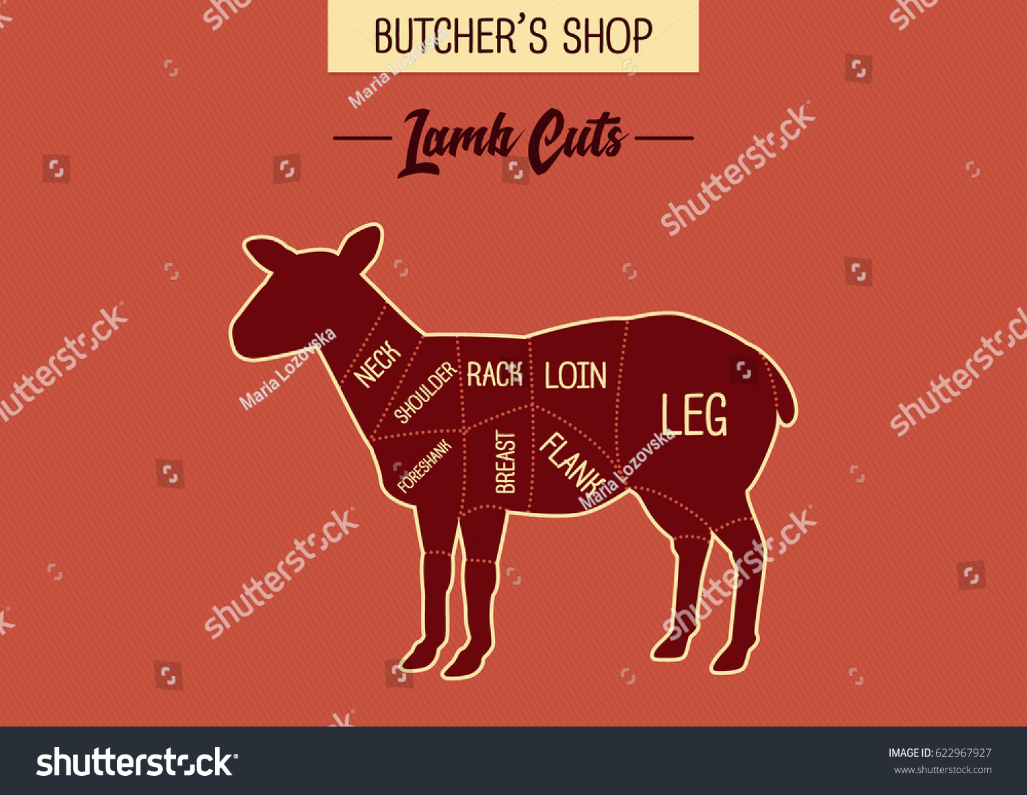 hight resolution of butcher shop s lamb cut illustration chart diagram specialty cuts of sheep meat for butchering and