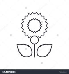carnation line icon concept carnation flat vector sign symbol illustration  [ 1500 x 1600 Pixel ]