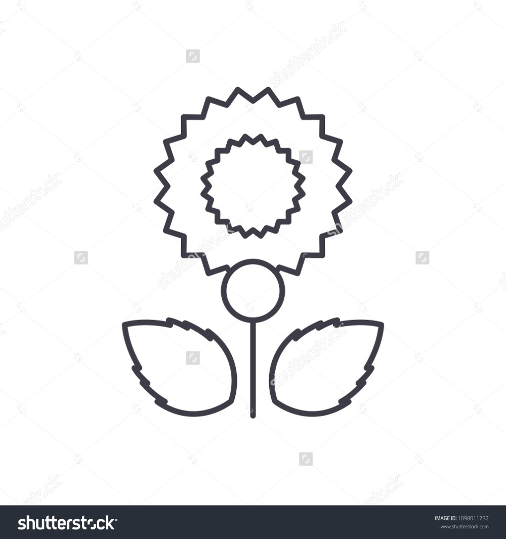 medium resolution of carnation line icon concept carnation flat vector sign symbol illustration
