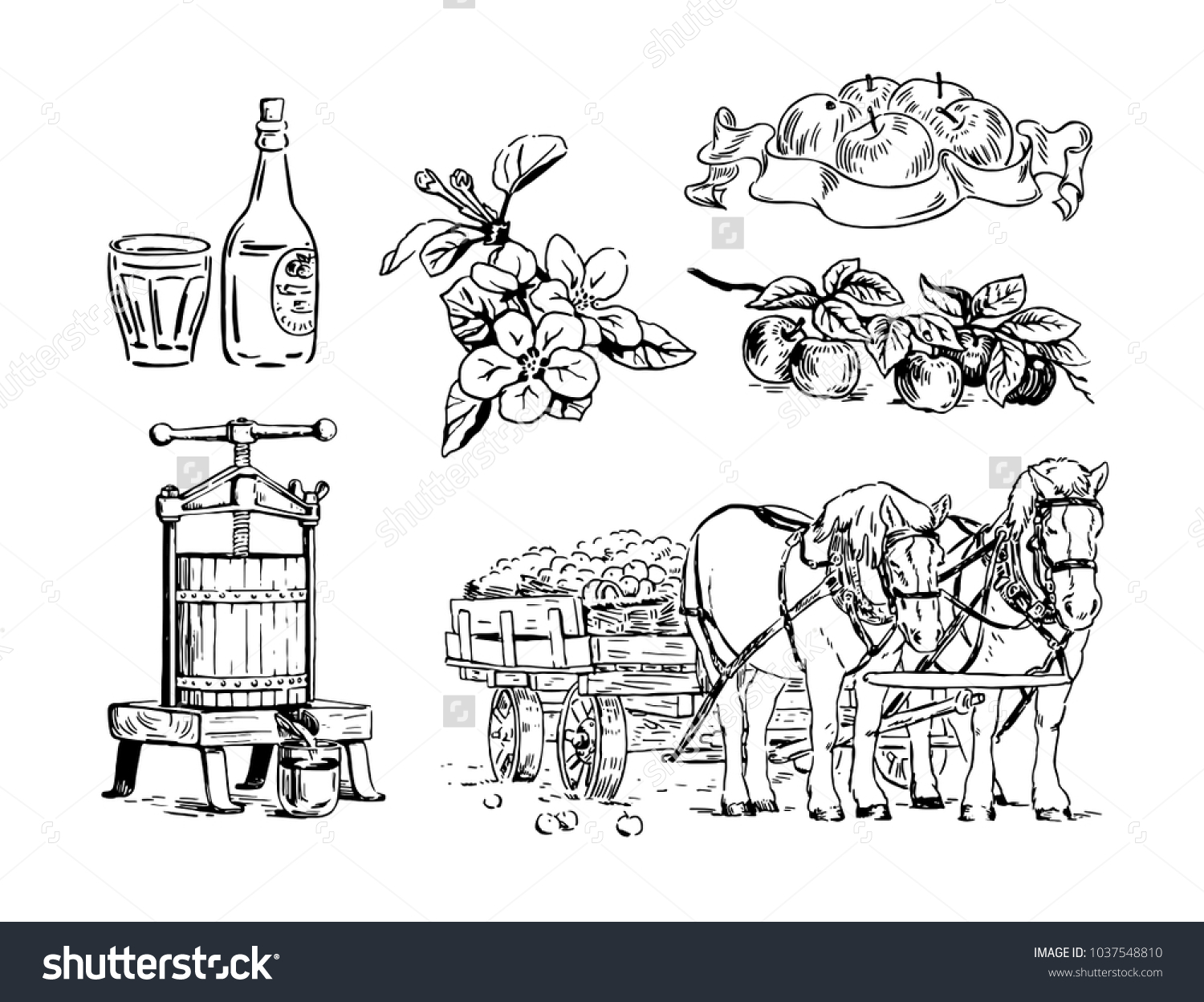 hight resolution of cartoon illustration of apple branches flowers press for squeezing horse cart bottle
