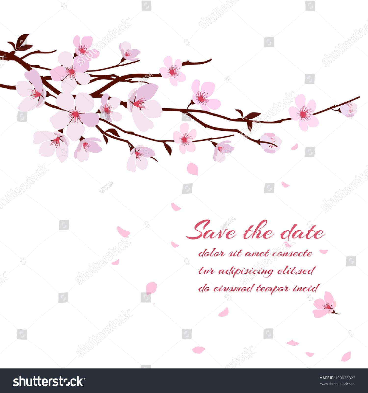 Cherry Blossoms Falling Stylized Wallpaper Cherry Blossom Sakura Branch Pink Flowers Stock Vector