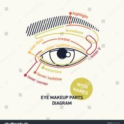 Glass Eye Diagram Parts 2007 Kia Spectra Stereo Wiring Fashion And Makeup Names Vidalondon