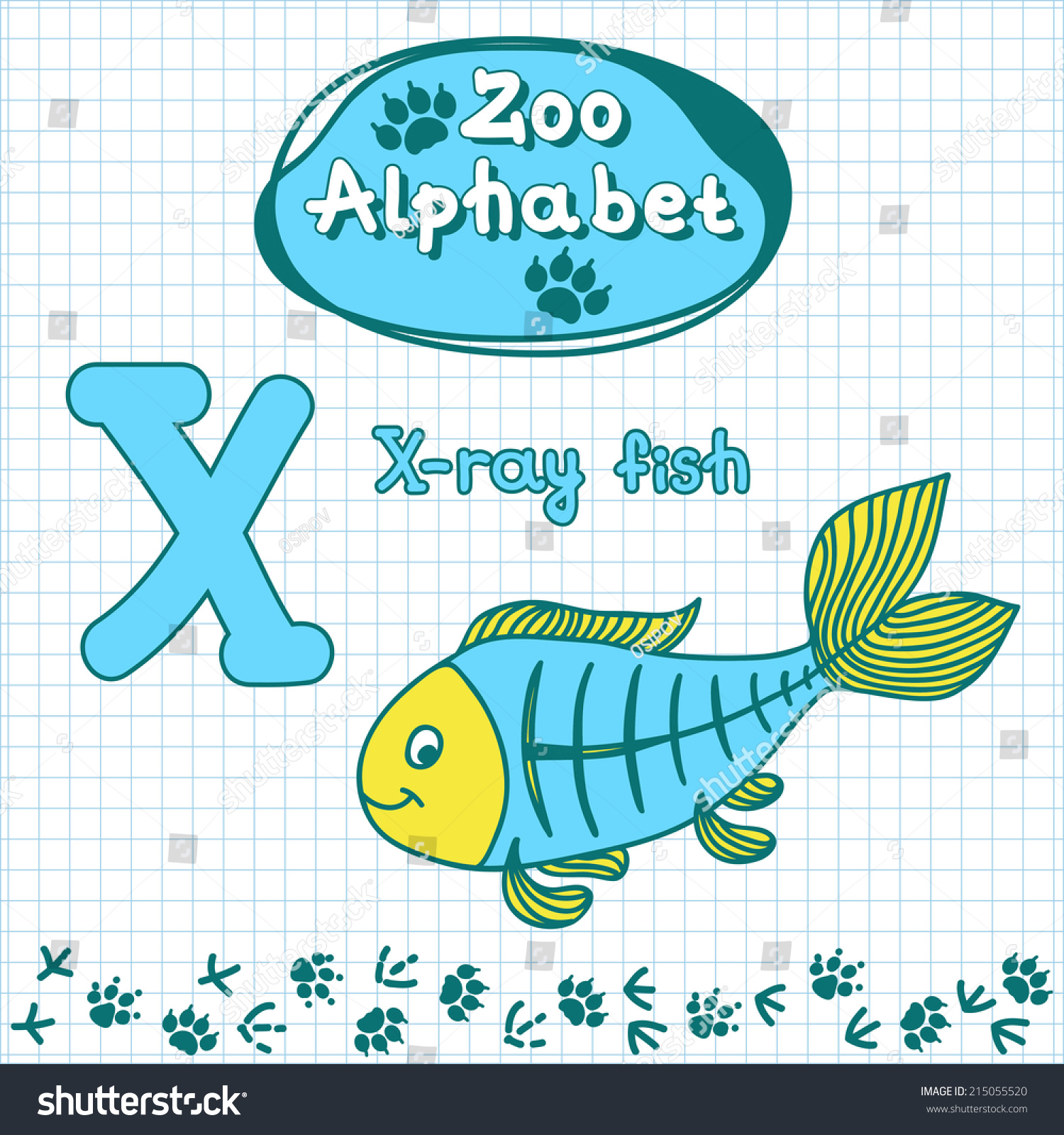 Colorful Childrens Alphabet Animals Xray Fish Stock Vector