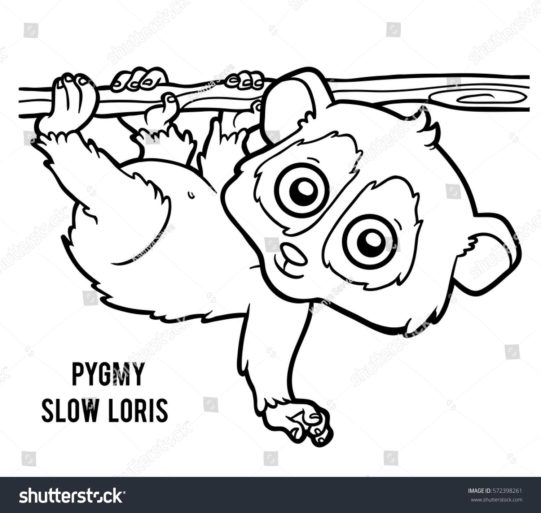 Coloring Book Children Pygmy Slow Loris Stock Vector