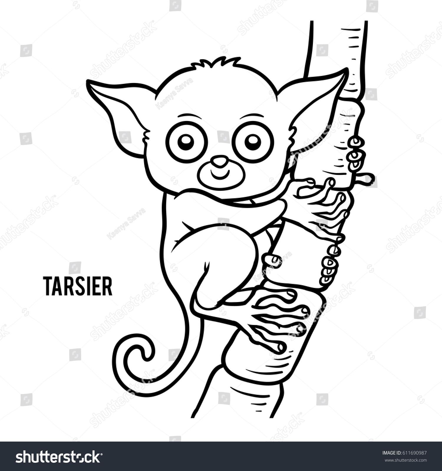 Coloring Book Children Tarsier Stock Vector