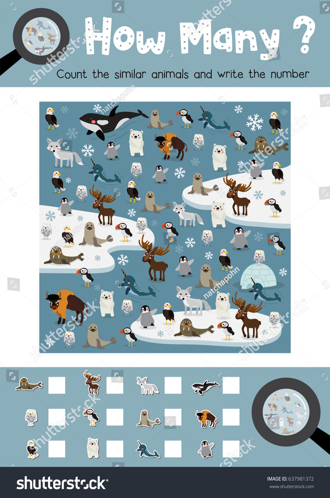 Arctic Animals Worksheet Kindergarten