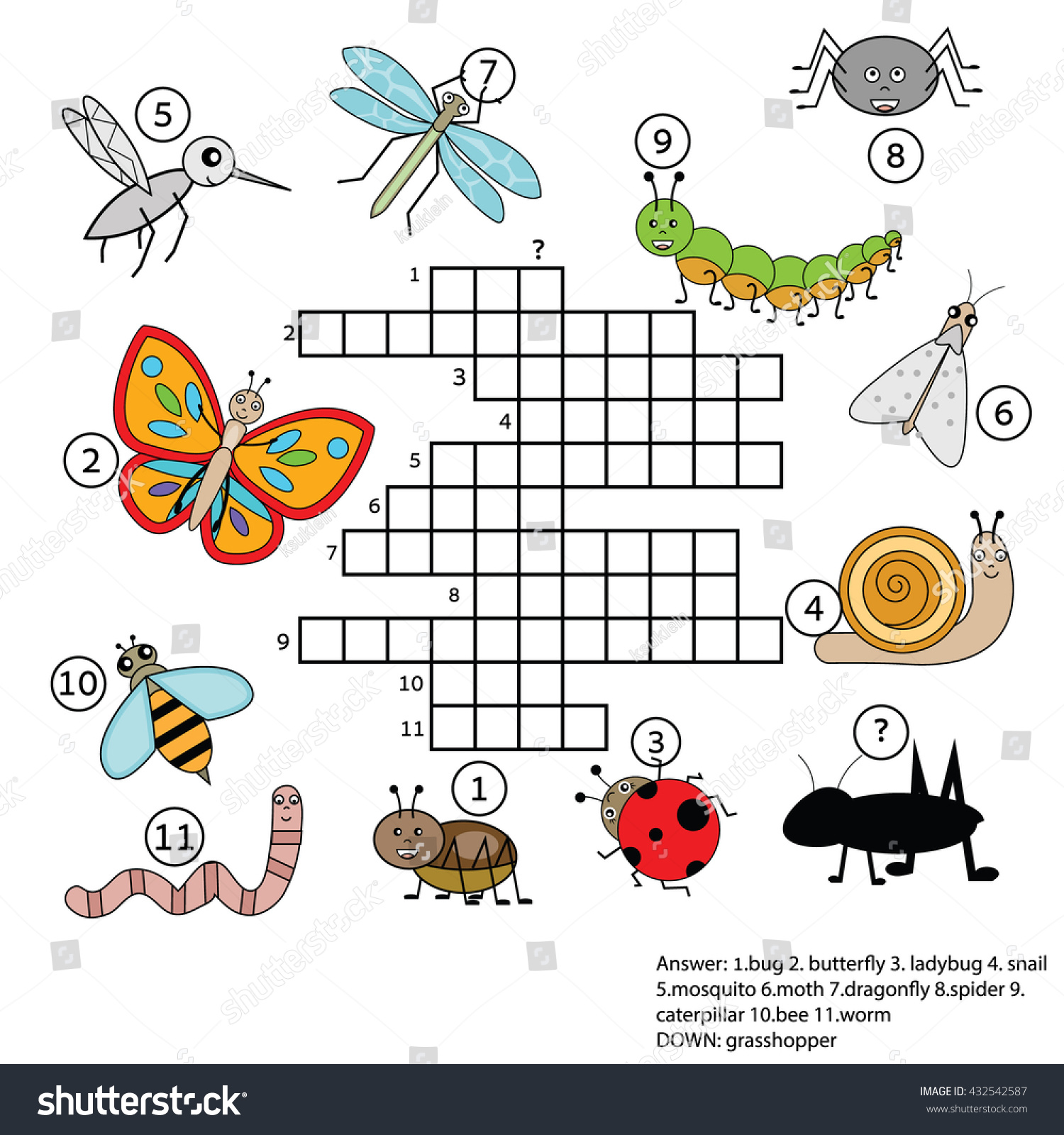 Crossword Educational Children Game Answer Learning Stock