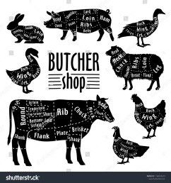cut of meat diagram for butcher poster for butcher shop guide for cutting [ 1500 x 1600 Pixel ]