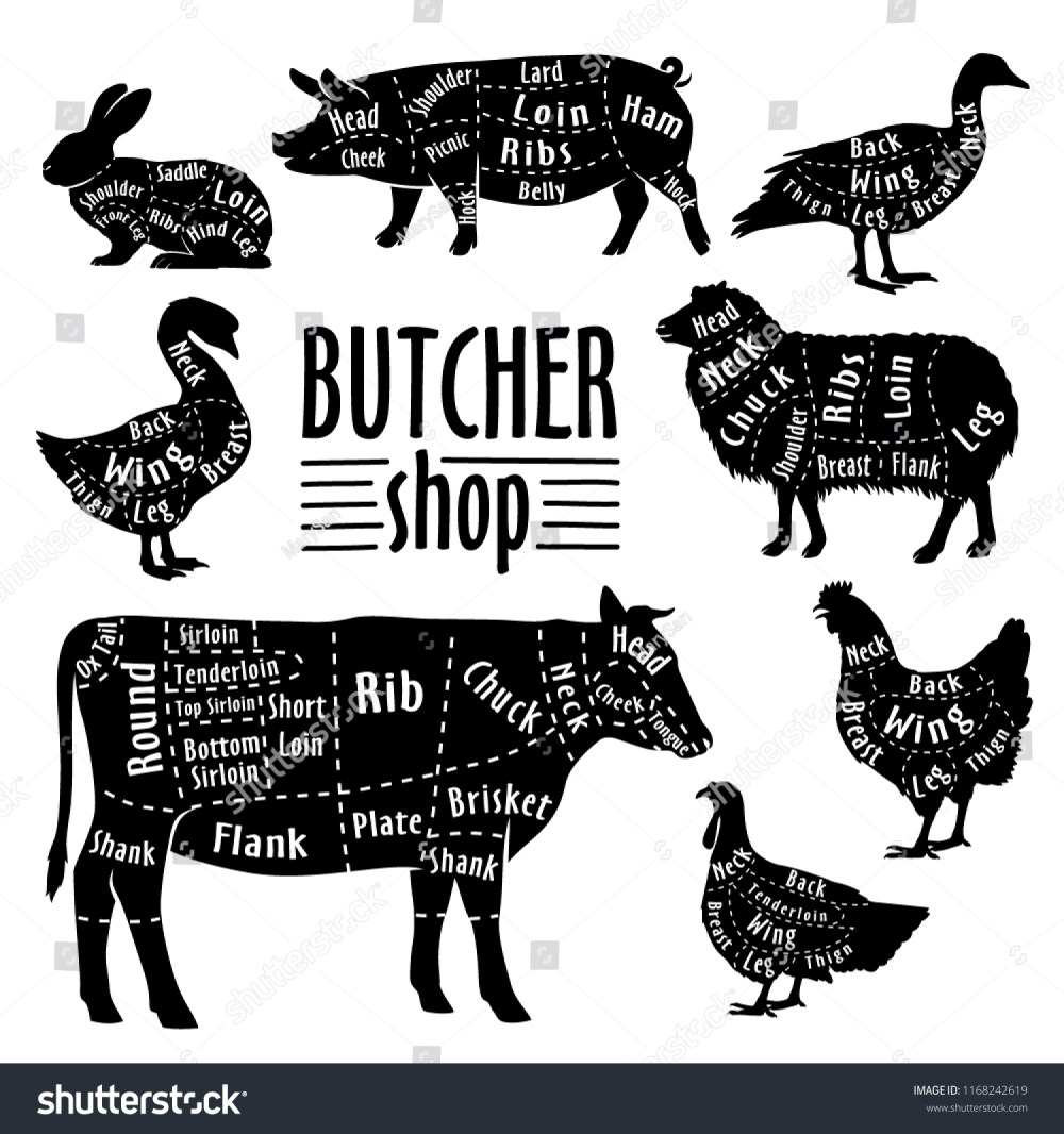 medium resolution of cut of meat diagram for butcher poster for butcher shop guide for cutting