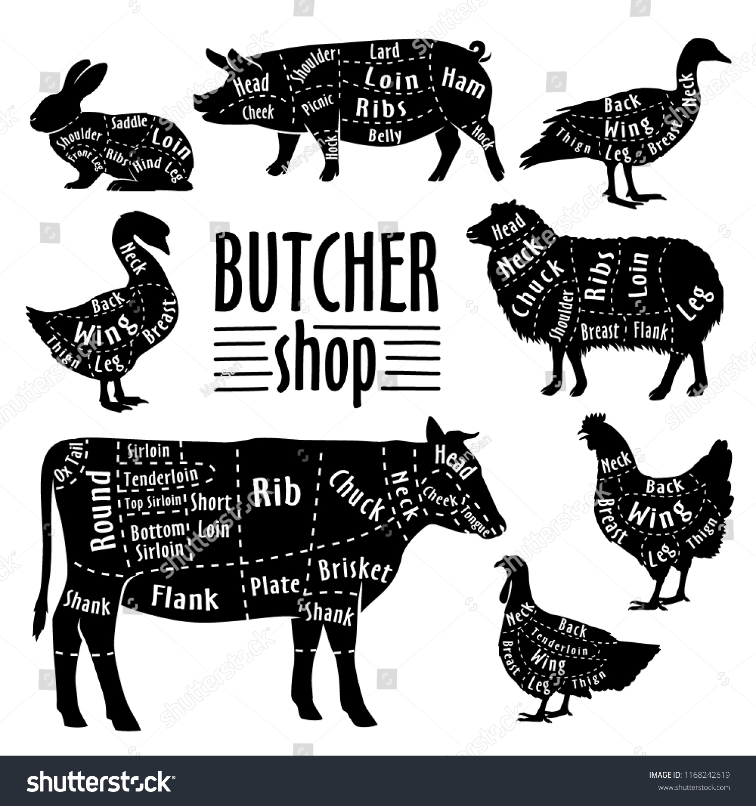 hight resolution of cut of meat diagram for butcher poster for butcher shop guide for cutting