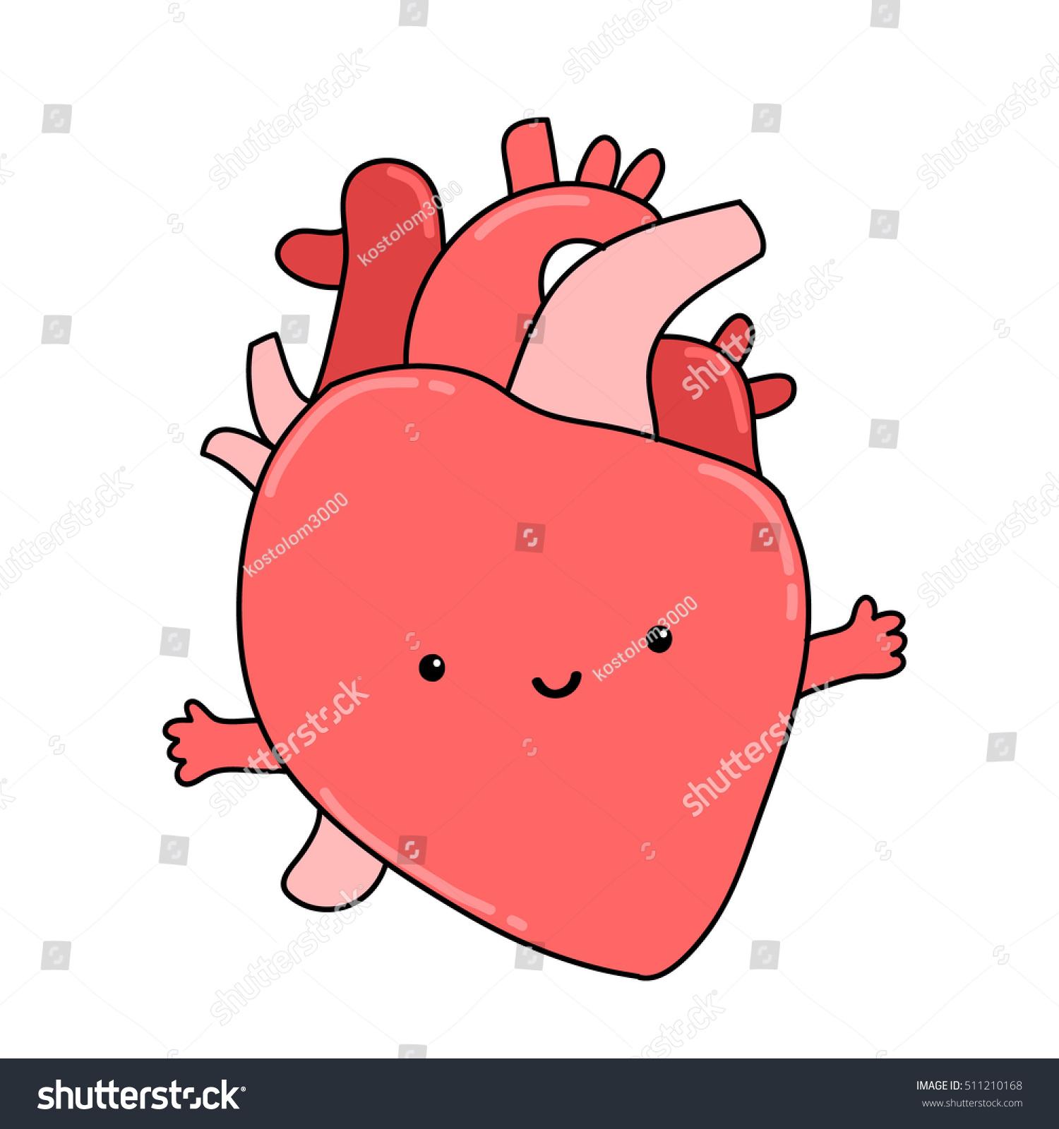 Cute Anatomical Cartoon Human Heart Organ Stock Vector