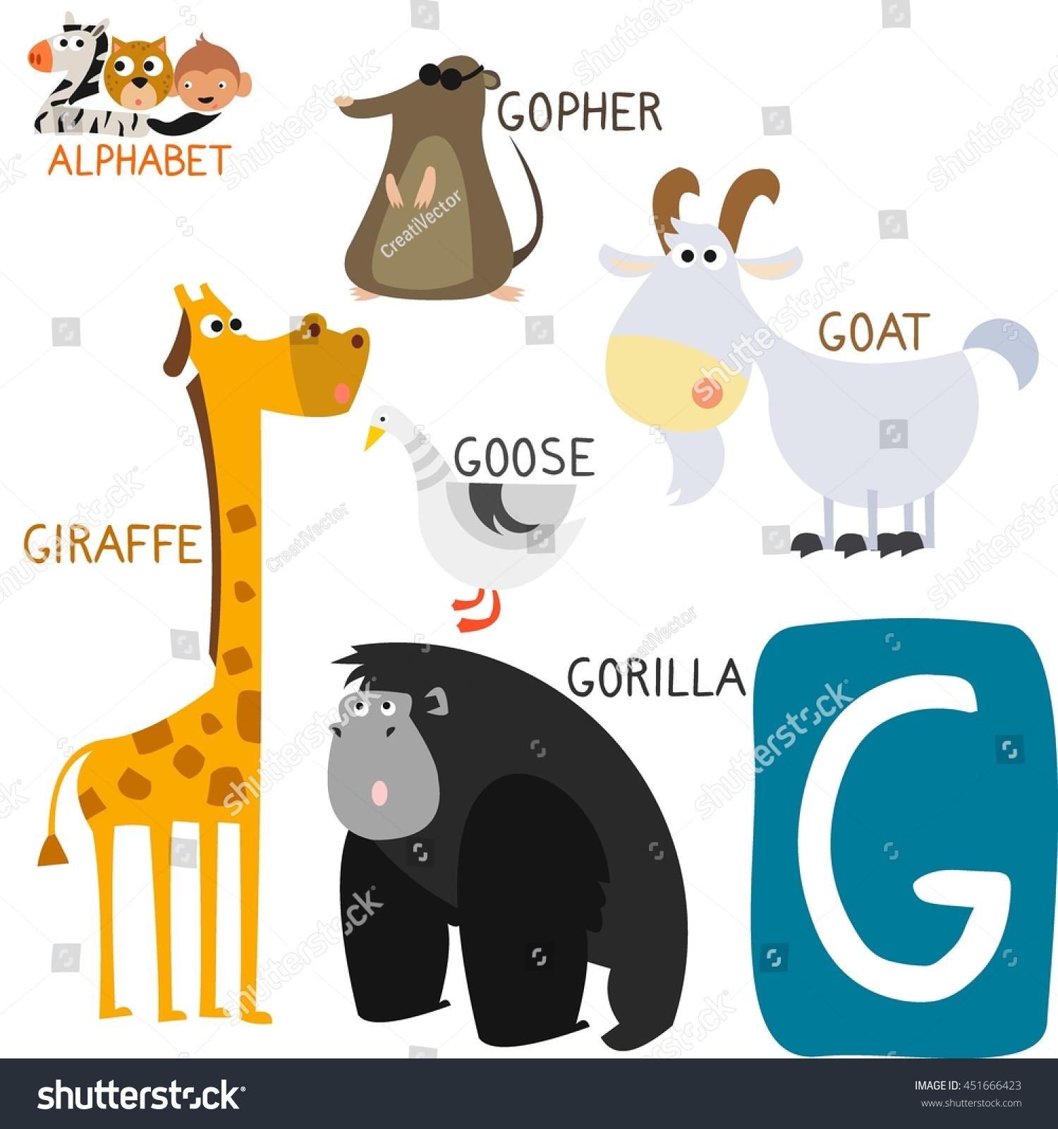 Cute Animal Zoo Alphabet Letter G Stock Vector