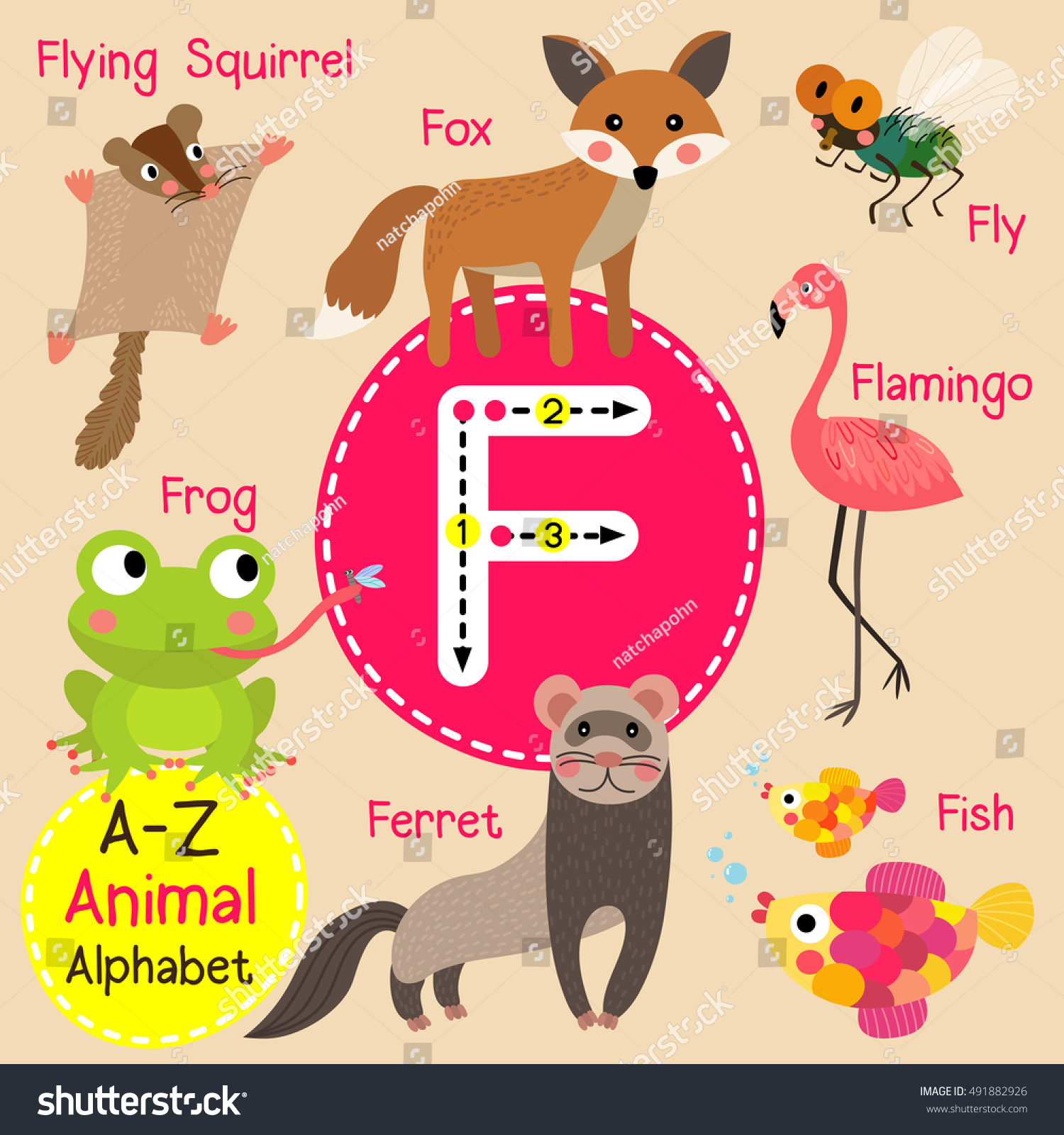 Cute Children Zoo Alphabet F Letter Stock Vector