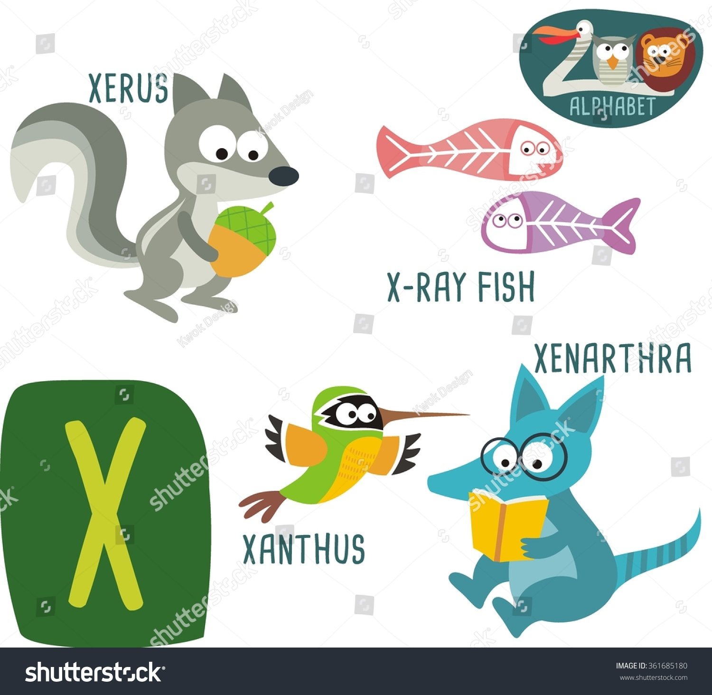 Cute Zoo Alphabet Vector X Letter Stock Vector