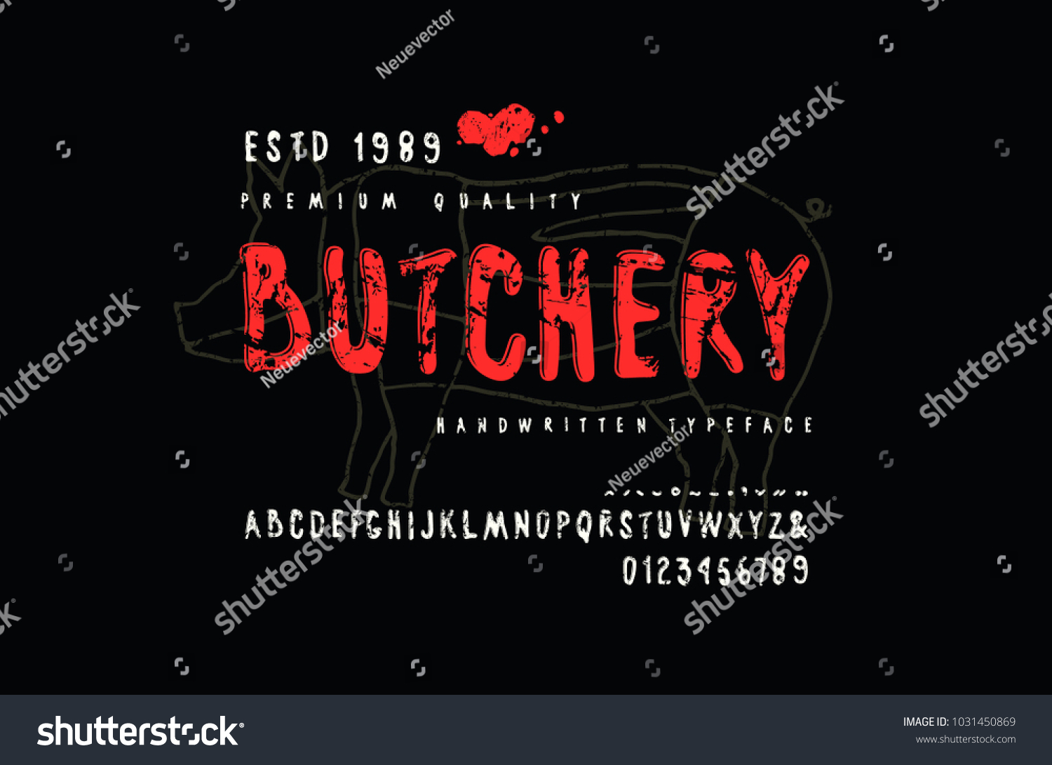 hight resolution of decorative sans serif font in handwritten style and label for butchery with pig diagram letters