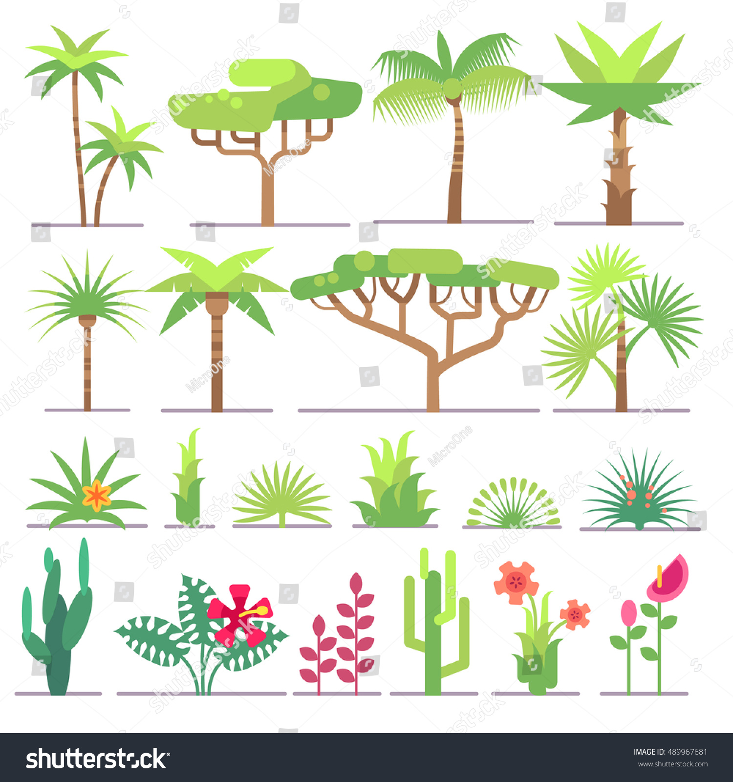 Different Types Tropical Plants Trees Flowers Stock Vector