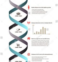 dna ribbon banner icons science infographics stock vector royalty rh shutterstock com dna replication diagram dna model [ 1059 x 1600 Pixel ]