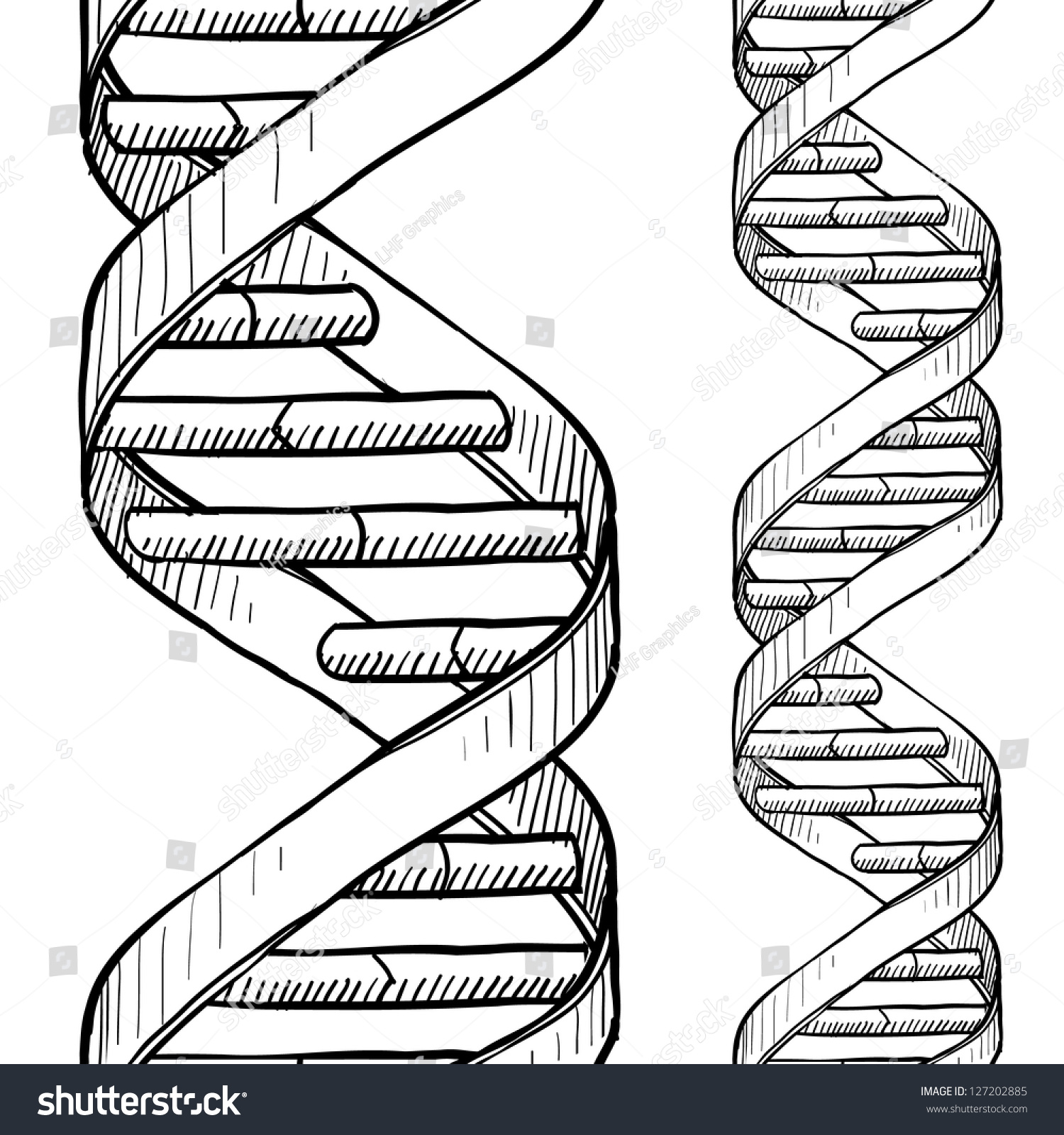 Doodle Style Dna Double Helix Seamless Stock Vector